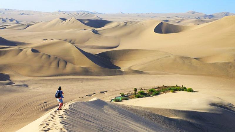 Passeio pelo Deserto de Paracas no Peru